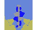 lek. med. Tadeusz Liczko Logo